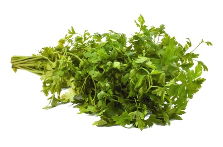 Parsley on the white background photo