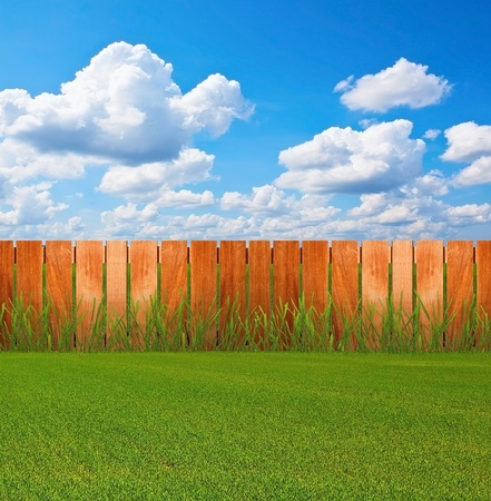 wood lawn: Green grass in garden with fence