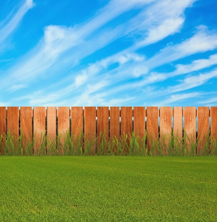 pasture fence: Green grass in garden with fence