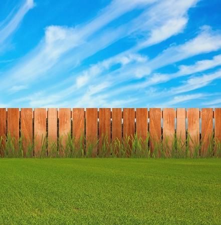 Zielona trawa w ogrodzie przy płocie
