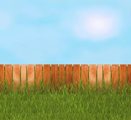 Green grass in garden with fence photo