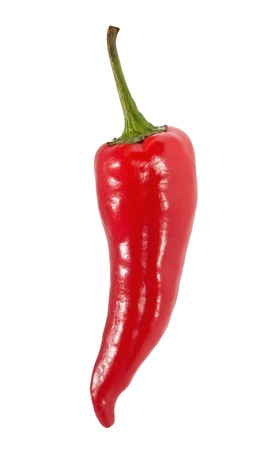 Red chilli pepper isolated on white background photo