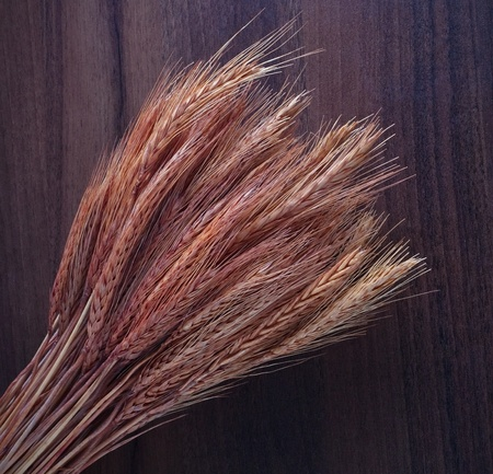 Wheat ears on the wooden background photo