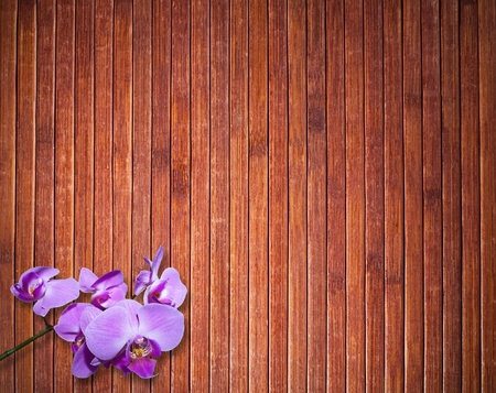 Background texture of brown  wooden floor with orchid flower photo