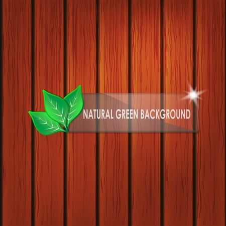 weathered wood: Green leaves on wooden background with space for text