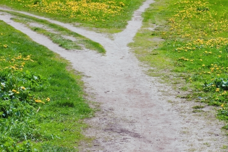 Pathway fork in summer meadow  Stock Photo - 13734325