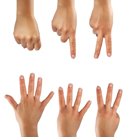 Six counting hands on white background photo