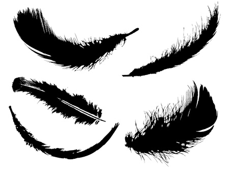 effortless: Cinco plumas negro