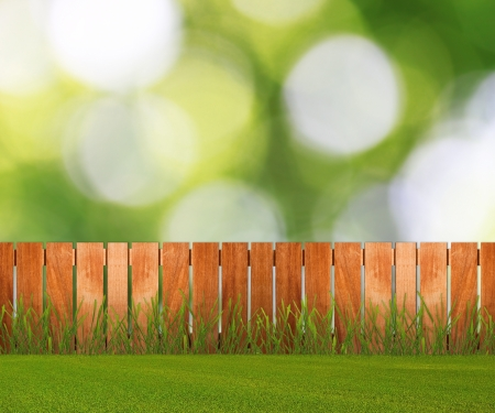 Green grass in garden with fence near the brick wall photo
