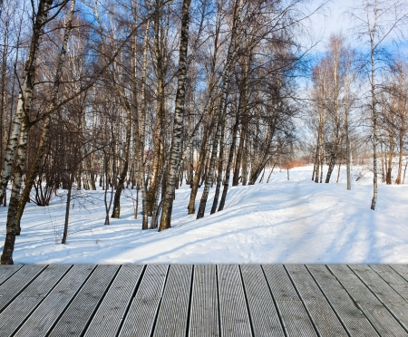 Birch winter forest on sunny day with wooden path Stock Photo - 15479796