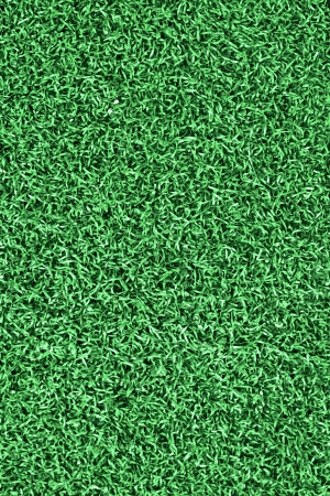 Grass on the soccer field photo