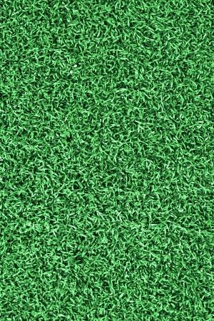 Grass on the soccer field