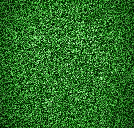 Artificial grass on the football field photo
