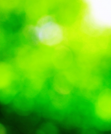 Spring nature bokeh background photo