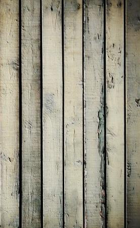 arboles blanco y negro: Las tarjetas de color madera fromr Foto de archivo
