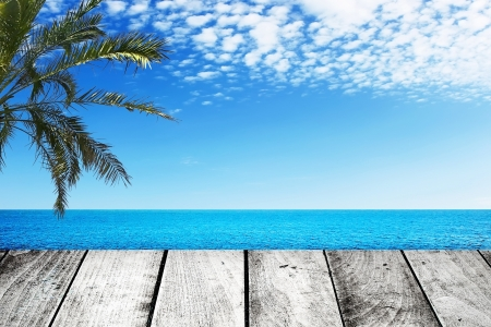 Wooden gray pier and palm tree on sunny day  photo