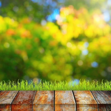 Green grass with wooden pier over summer background