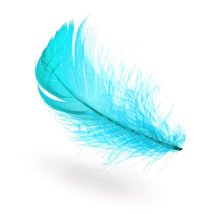 Light blue flying feather with shadow on white background photo