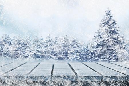 겨울 전나무 나무와 피크닉 테이블