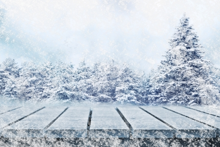 Winter fir trees and picnic table Stock Photo