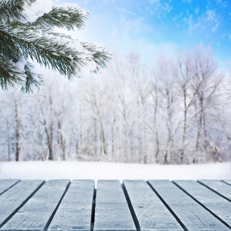 wintery day: Forest background and wooden walkway
