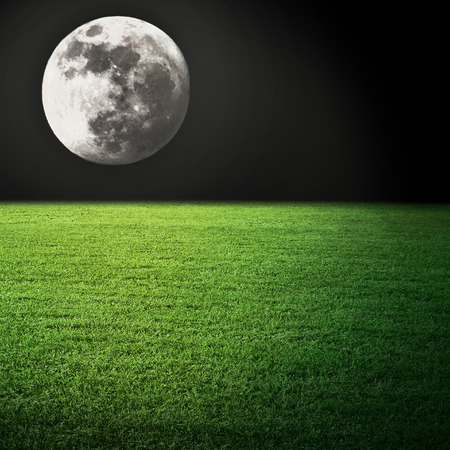 Moon light in the night green field photo