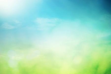 Cielo de primavera con flores que crecen de sol y la hierba en el campo Foto de archivo - 27621930