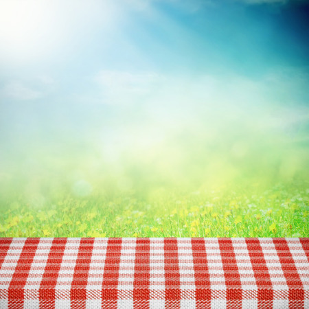 picnic table: Picnic table on the summer field in sunlight