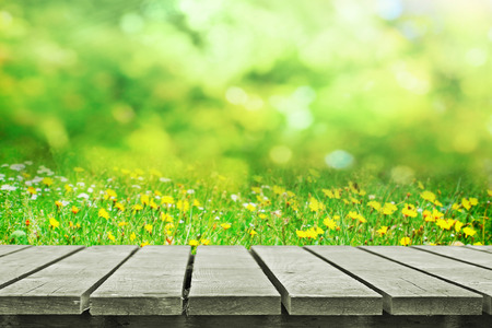 봄 초원 근처 나무 테이블 스톡 콘텐츠 - 28785973