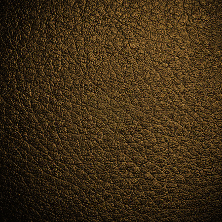 rough leather: Black leather background