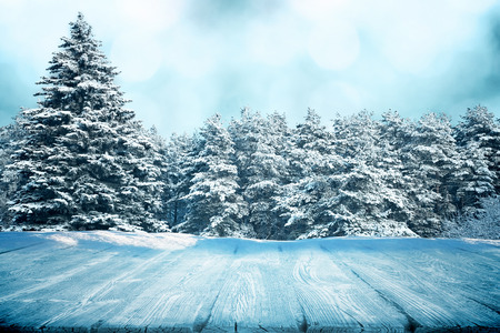 Wooden path or picnic table in winter forest photo