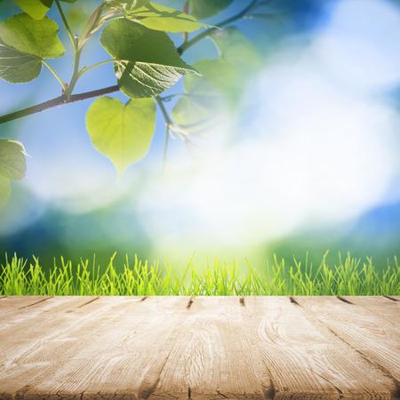 Groen gras met houten pier over zomer achtergrond Stockfoto