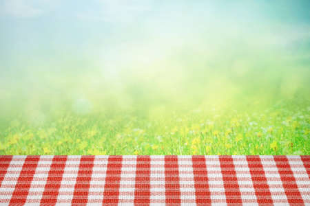 Picnic table on the summer field in sunlight
