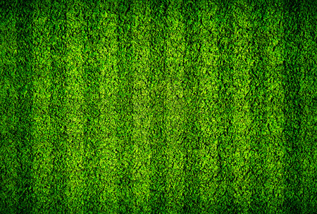 Natural green football field background