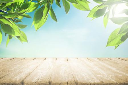 木製ピクニック テーブルで夏空に太陽の光