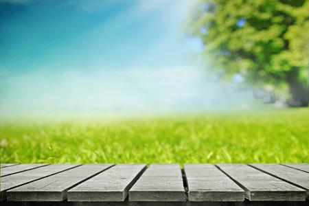 Picnic in meadow Standard-Bild