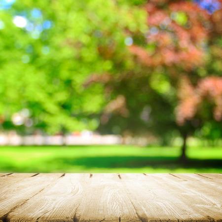 空気に夏のピクニック