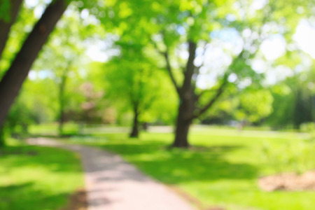 Summer growing sunny park with unrecognizable people, blurred background Foto de archivo