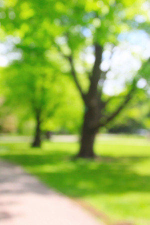 unrecognizable people: Summer growing sunny park with unrecognizable people, blurred background Stock Photo