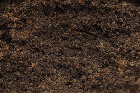 soil: Blank space of soil surface