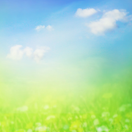 Sunny meadow with butterfly Stock Photo