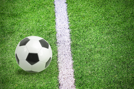 Soccer footblall field with white line