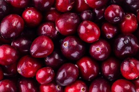 Ripe cranberry berry background