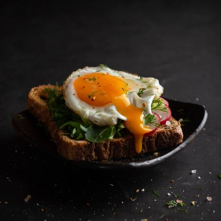Sandwich with fried egg,spinachm radish and dill Imagens