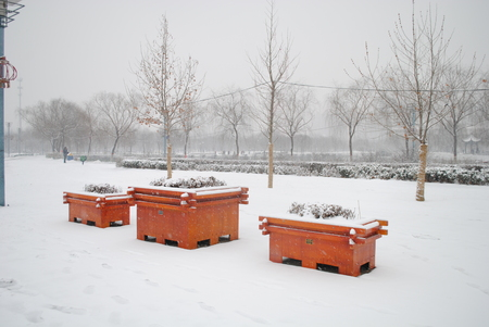 snowing: Snowing scenic in a park
