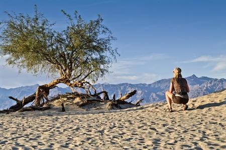 cowering: female cowering in the death valley desert