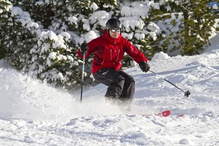 offpiste: Man is skiing between trees