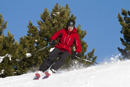 Man is skiing backcountry  between fir trees photo
