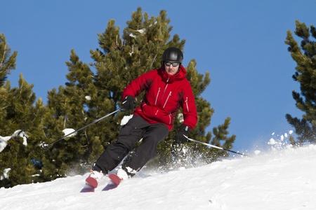 Man is skiing backcountry  between fir trees photo
