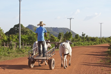 Young cambodian farmer on the way to his farm